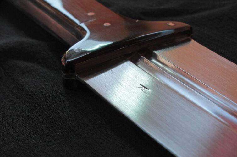Basilard Sword